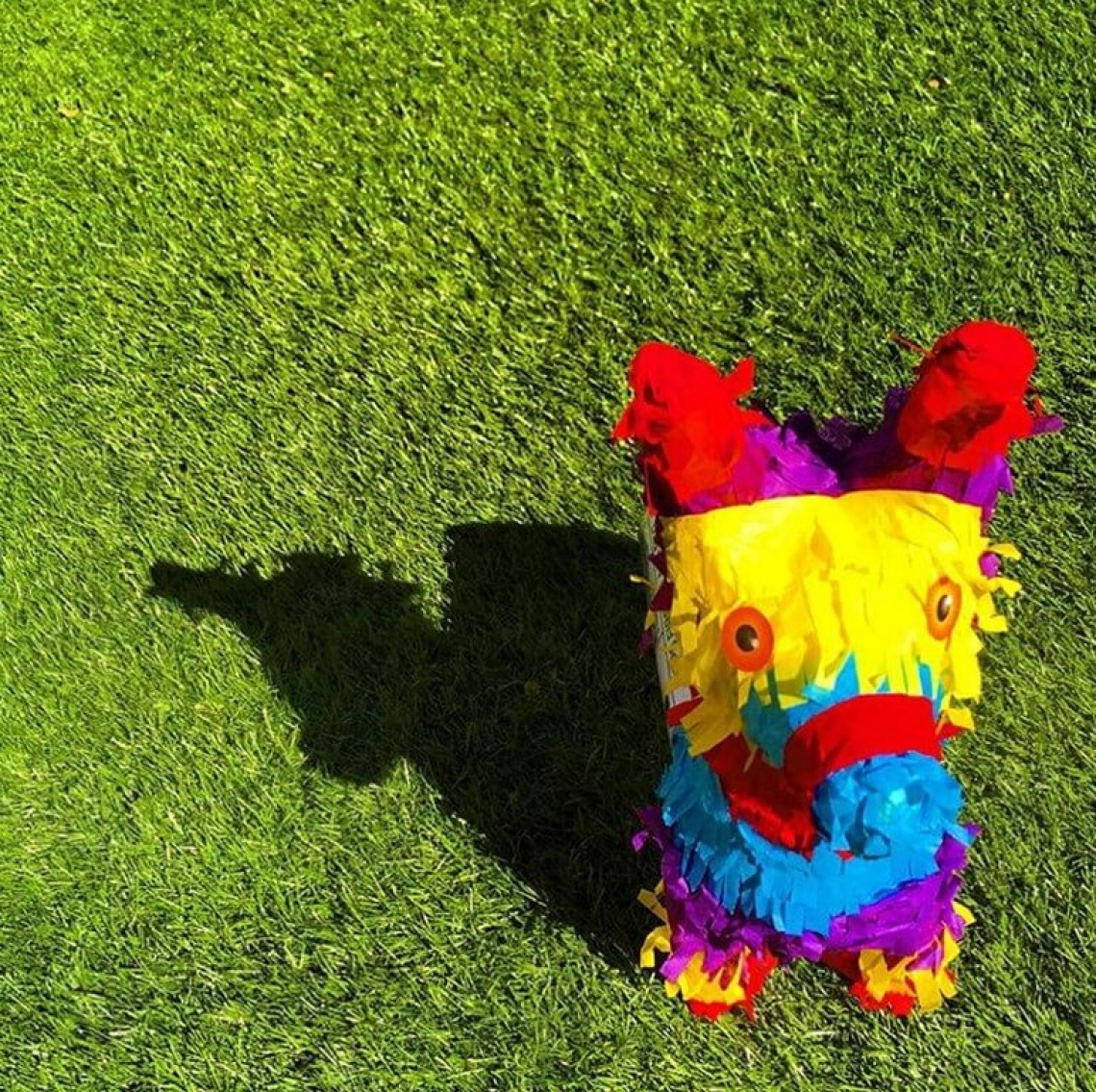 Pinatagrams, Pinata on grass, Nathan Butorac
